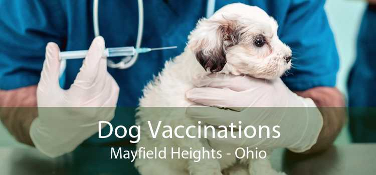 Dog Vaccinations Mayfield Heights - Ohio