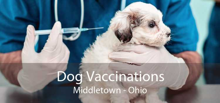 Dog Vaccinations Middletown - Ohio