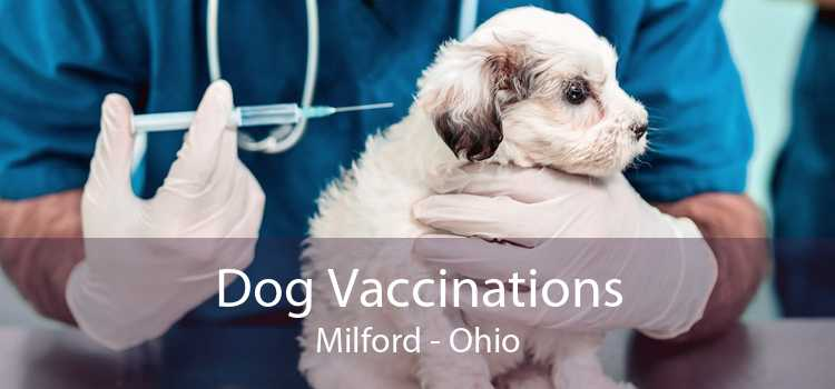 Dog Vaccinations Milford - Ohio