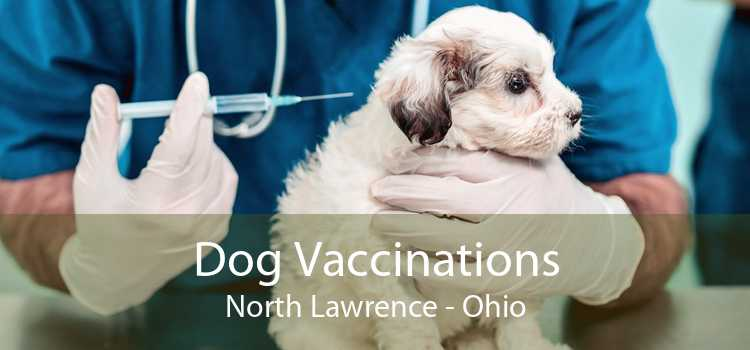 Dog Vaccinations North Lawrence - Ohio