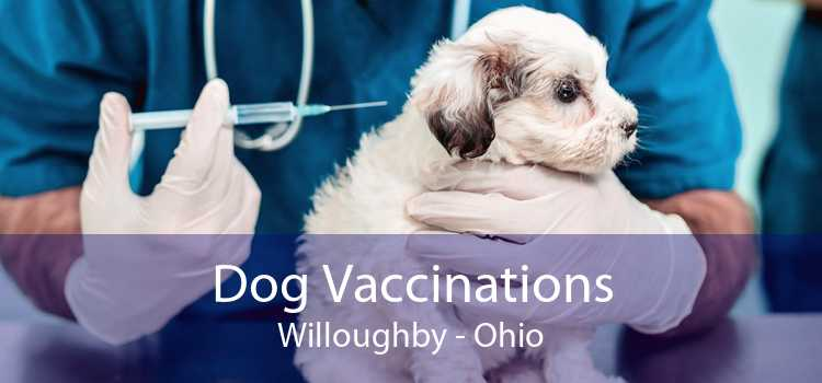 Dog Vaccinations Willoughby - Ohio