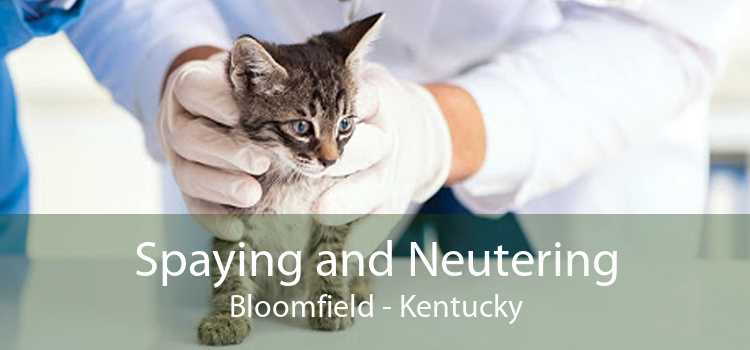 Spaying and Neutering Bloomfield - Kentucky
