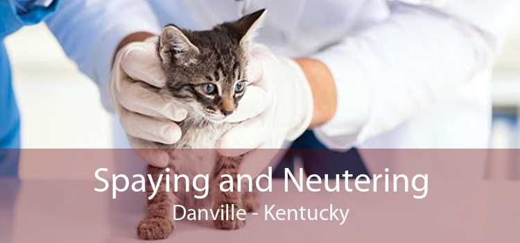 Spaying and Neutering Danville - Kentucky