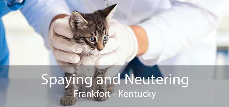 Spaying and Neutering Frankfort - Kentucky