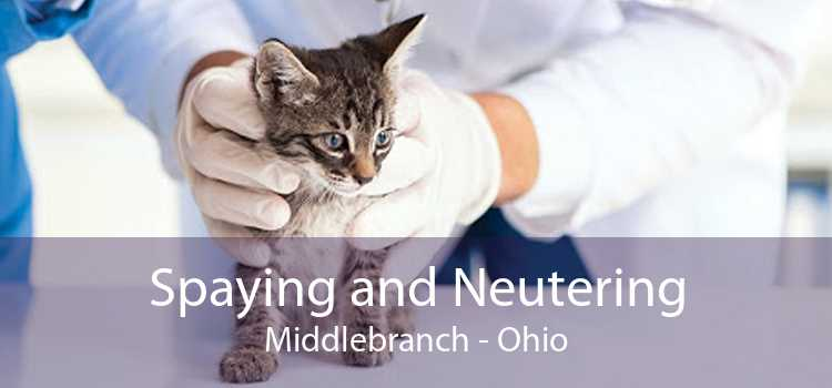 Spaying and Neutering Middlebranch - Ohio