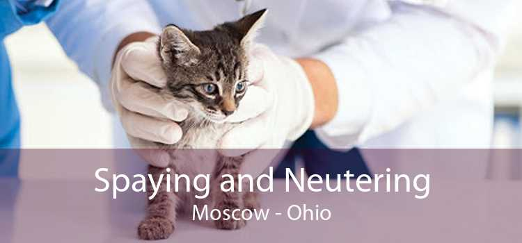 Spaying and Neutering Moscow - Ohio