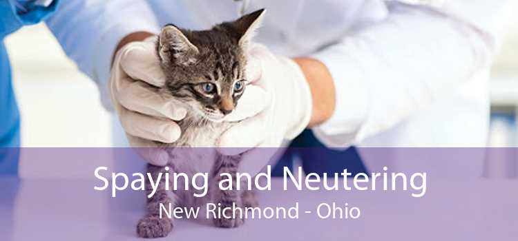 Spaying and Neutering New Richmond - Ohio