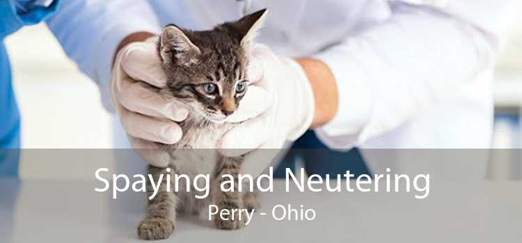 Spaying and Neutering Perry - Ohio