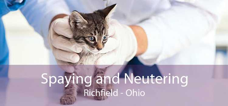 Spaying and Neutering Richfield - Ohio