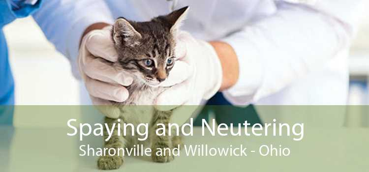 Spaying and Neutering Sharonville and Willowick - Ohio