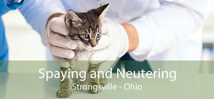 Spaying and Neutering Strongsville - Ohio