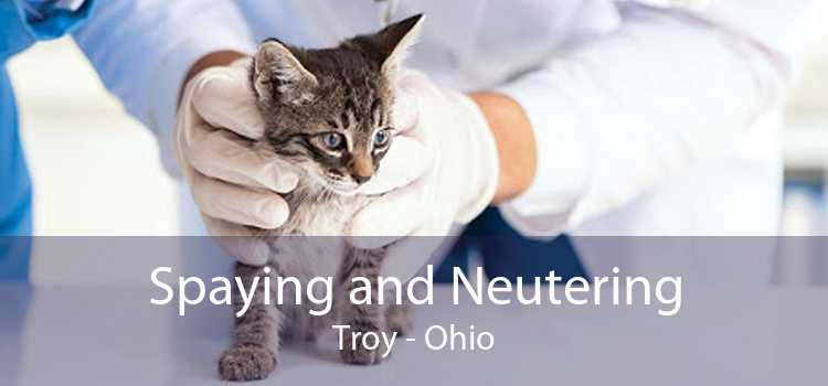 Spaying and Neutering Troy - Ohio